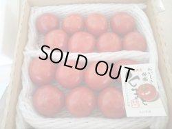 画像1: 清香トマト2kg(家庭用)